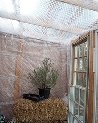 chicken coop insulation
